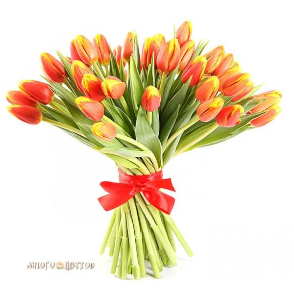 """Букет """" 35 Огненных тюльпанов"""""""