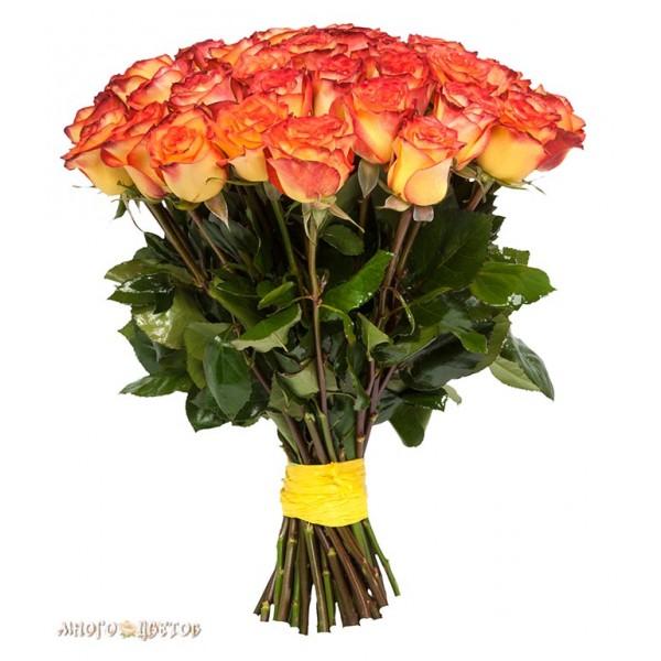 """Букет """"25 Ярких роз"""""""